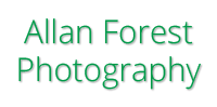 Allan Forest Photography Logo